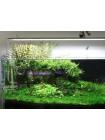 Светодиодный светильник Chihiros LED A801 (80 см)