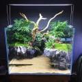 Светильник Chihiros A451 Plus  (45 см)